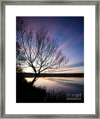 Greenlake Serenity Framed Print by Mike Reid