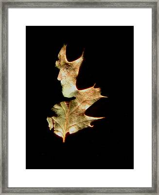 Greenman Framed Print by Arla Patch