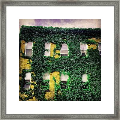 Greenvasion Framed Print by Amy DiPasquale