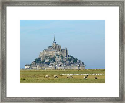 Grevin And Gulls Salt Meadow Framed Print by M.Gréard