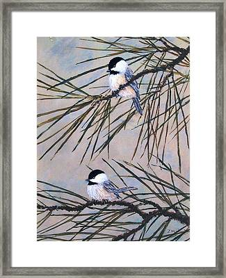 Framed Print featuring the painting Grey Pine Chickadees by Kathleen McDermott