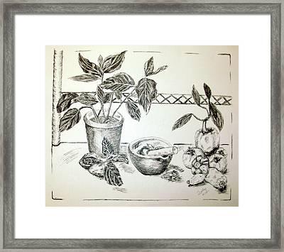 Grinding Herbs Framed Print by Shelley Bain