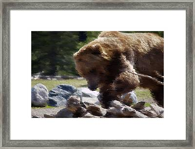 Grizz Dinner Framed Print by Kevin Bone