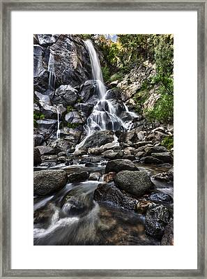 Grizzly Falls Framed Print