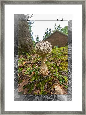 Ground Breaker Framed Print by Gene Hilton