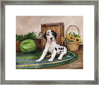 Framed Print featuring the painting Growing Fast by Nancy Patterson
