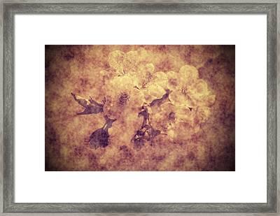Grunge Flowers Framed Print by Jaroslaw Grudzinski