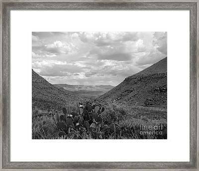 Guadalupe Mountain View Framed Print