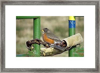 Framed Print featuring the photograph Guardian Of The Gate by I'ina Van Lawick