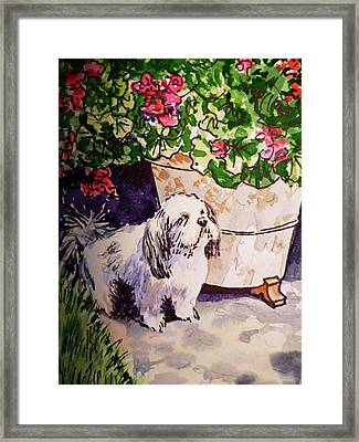 Guarding Geranium Sketchbook Project Down My Street Framed Print by Irina Sztukowski