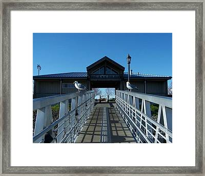 Guarding The Gate Framed Print