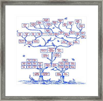Guggenheim Family Tree Framed Print by Science Source