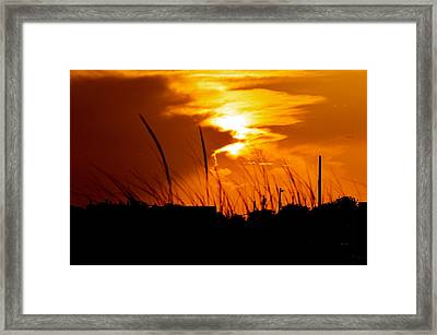 Guiding Light Framed Print by Joe  Burns