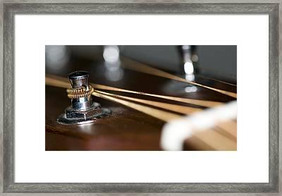 Guitar String Windings Framed Print by C Ribet