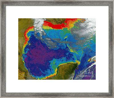 Gulf Of Mexico Dead Zone Framed Print by Science Source