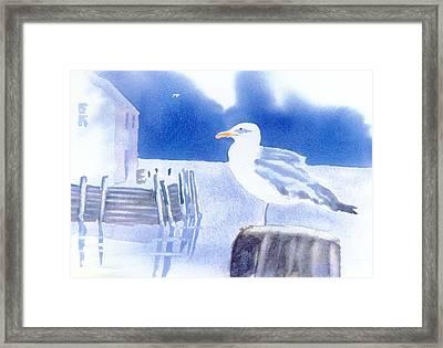 Gull Watch Framed Print by Joseph Gallant