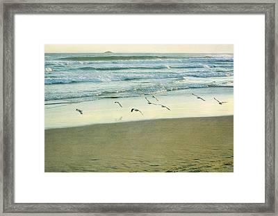 Gulls Flying Framed Print by Jill Ferry