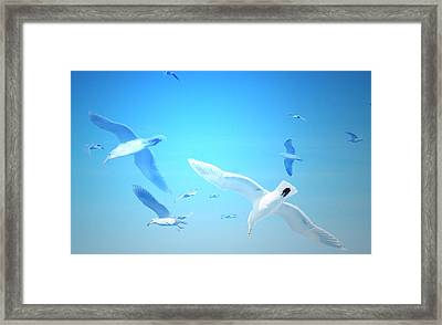 Framed Print featuring the digital art Gulls In Flight by Michele Cornelius