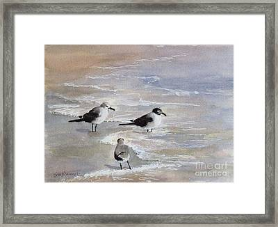 Gulls On The Beach Framed Print