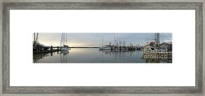 Habour Morning Framed Print by James Yang