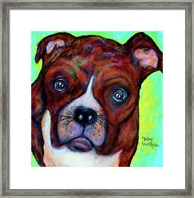 Hailey The Boxer Framed Print