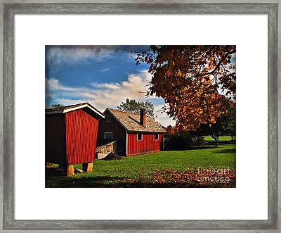 Hale Farm In Autumn Framed Print by Joan  Minchak