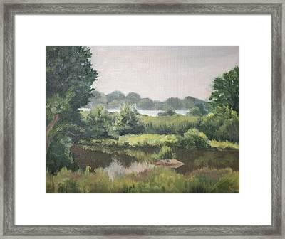 Haley Farm Pond Framed Print by Elena Liachenko