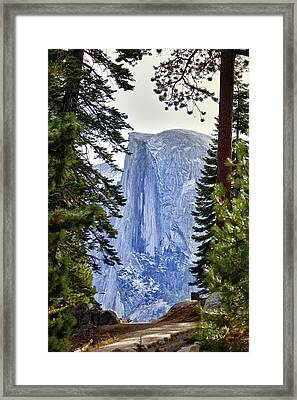 Half Dome Through The Trees Framed Print by Rick Berk