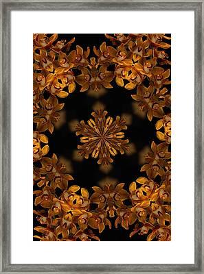 Hali Framed Print