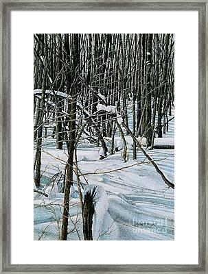 Haliburton Ontario Framed Print