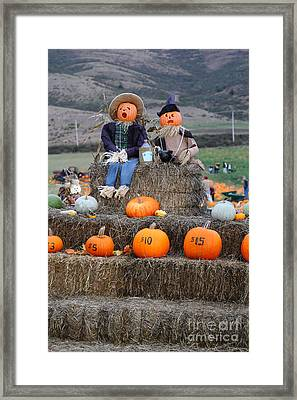Halloween Pumpkin Patch 7d8476 Framed Print by Wingsdomain Art and Photography