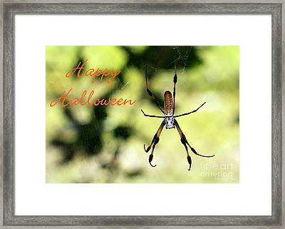Halloween Spider Card Framed Print by Sabrina L Ryan