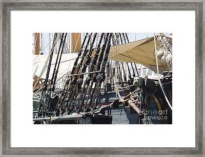 Halyards And Sheets Framed Print by MaryJane Armstrong