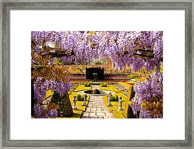 Hampton Court Gardens IIi Framed Print
