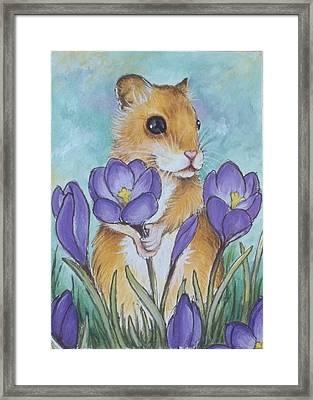 Hamster Picking Purple Crocus Framed Print by Debrah Nelson