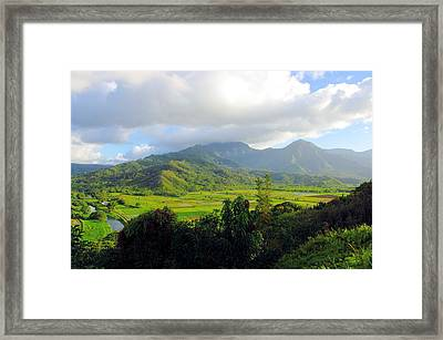 Hanalei Valley View Framed Print by John  Greaves