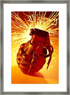 Hand Grenade  Framed Print by Garry Gay