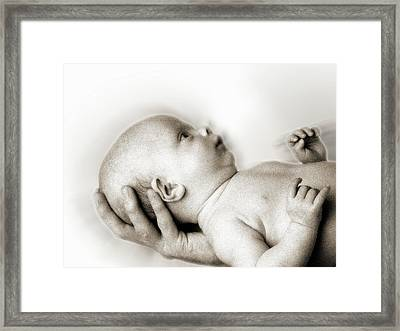 Hand Of Love  Framed Print
