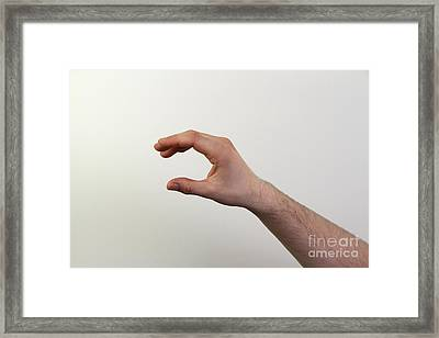 Hand Signing C Framed Print by Photo Researchers, Inc.