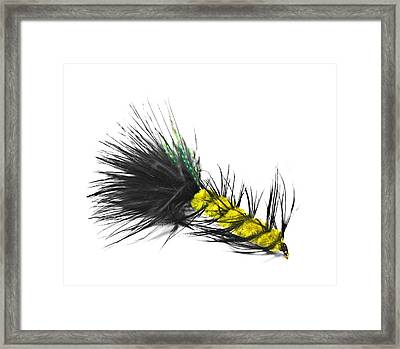 Hand Tied Fishing Lure Framed Print by Susan Leggett