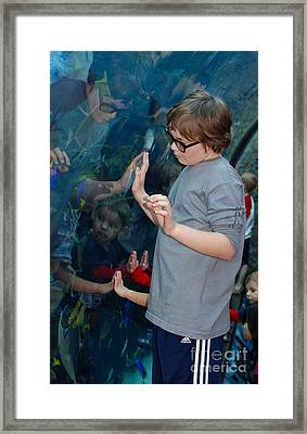 Hands Across The Water Framed Print by Andrea Simon