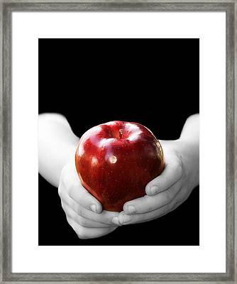 Hands Holding Apple Framed Print by Trudy Wilkerson
