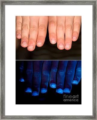 Hands Framed Print by Ted Kinsman