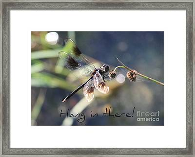 Hang In There Card Framed Print