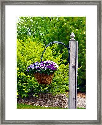 Hanging Garden Framed Print