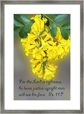 Hanging Yellow Flowers Ps. 11v7 Framed Print by Linda Phelps