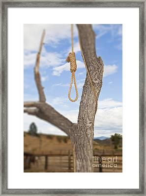 Hangman Noose In A Tree Framed Print by Bryan Mullennix