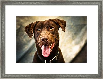 Happy Amos Framed Print