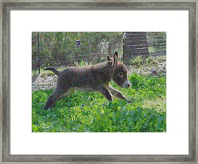 Happy Baby Framed Print by De Beall
