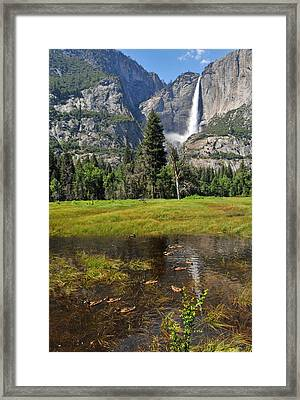 Framed Print featuring the photograph Happy Campers by Lynn Bauer